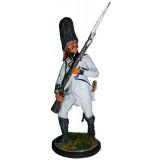 Tin soldier The Napoleonic wars Grenadier infantry regiment...