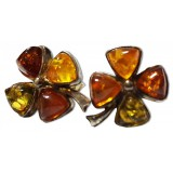 Amber earrings 2-209