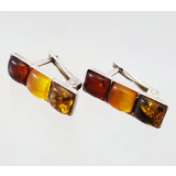 Amber earrings in the frame R0030639
