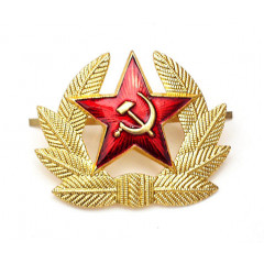 Badge Soldier's the old sample (star with cycle and  leaves)