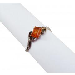 Amber ring Universe